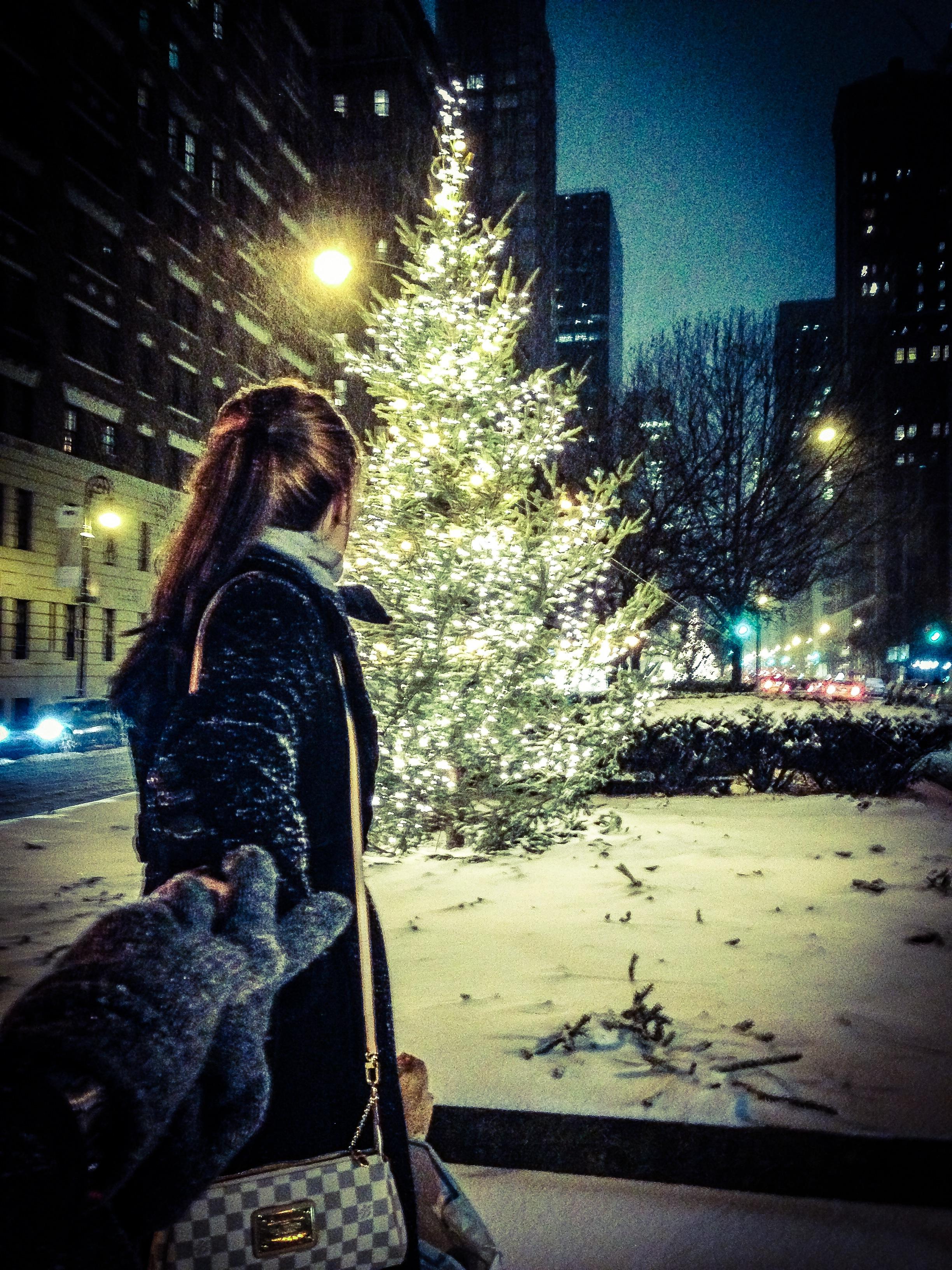 Park Avenue & 71st | Christmas Tree