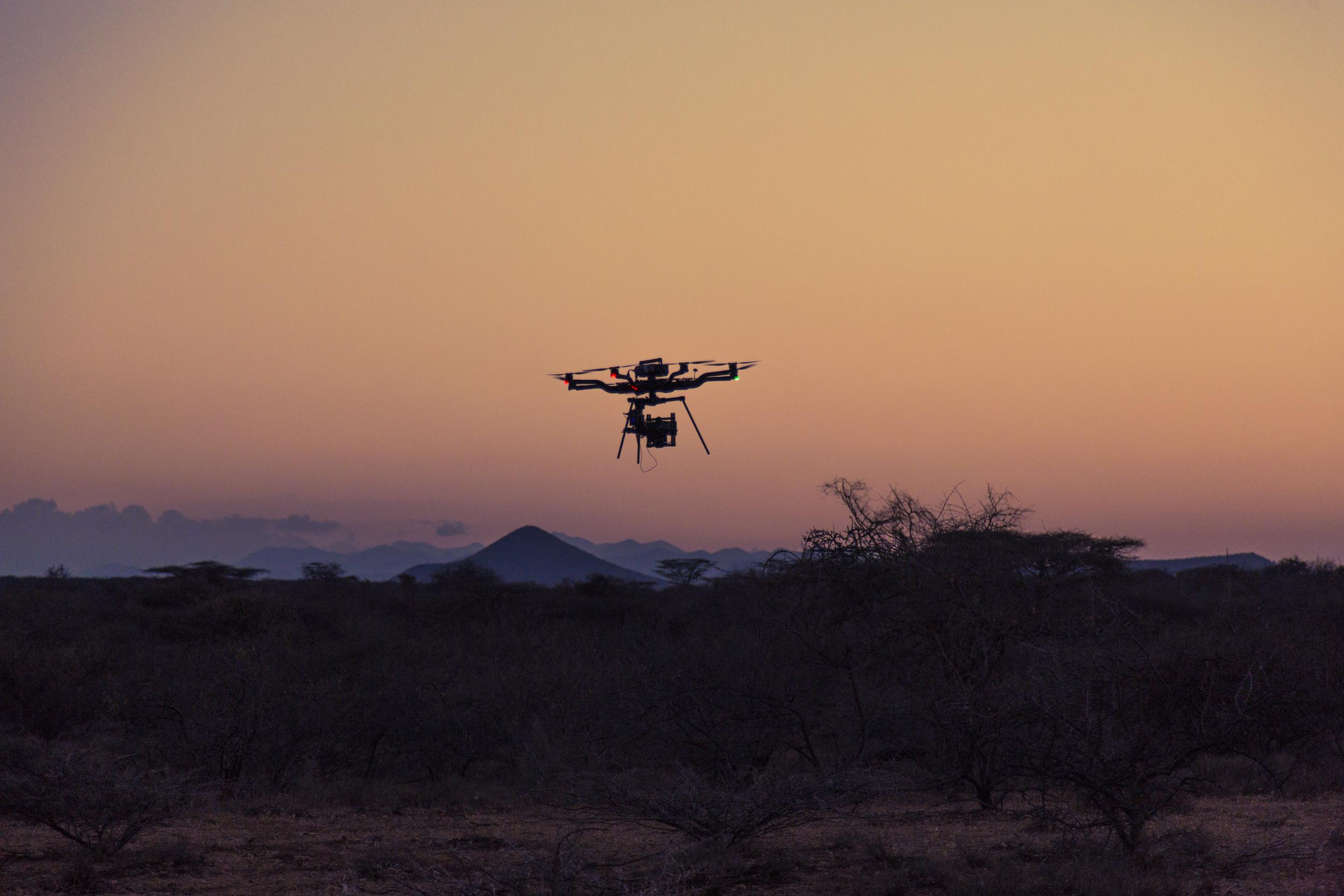 Freefly Snowbird - Kenya10.jpg