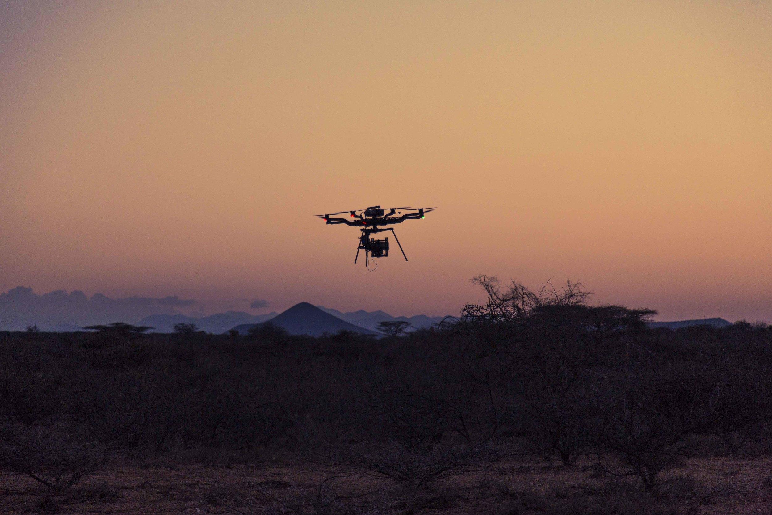 Freefly Snowbird - Kenya 01_lq.jpg