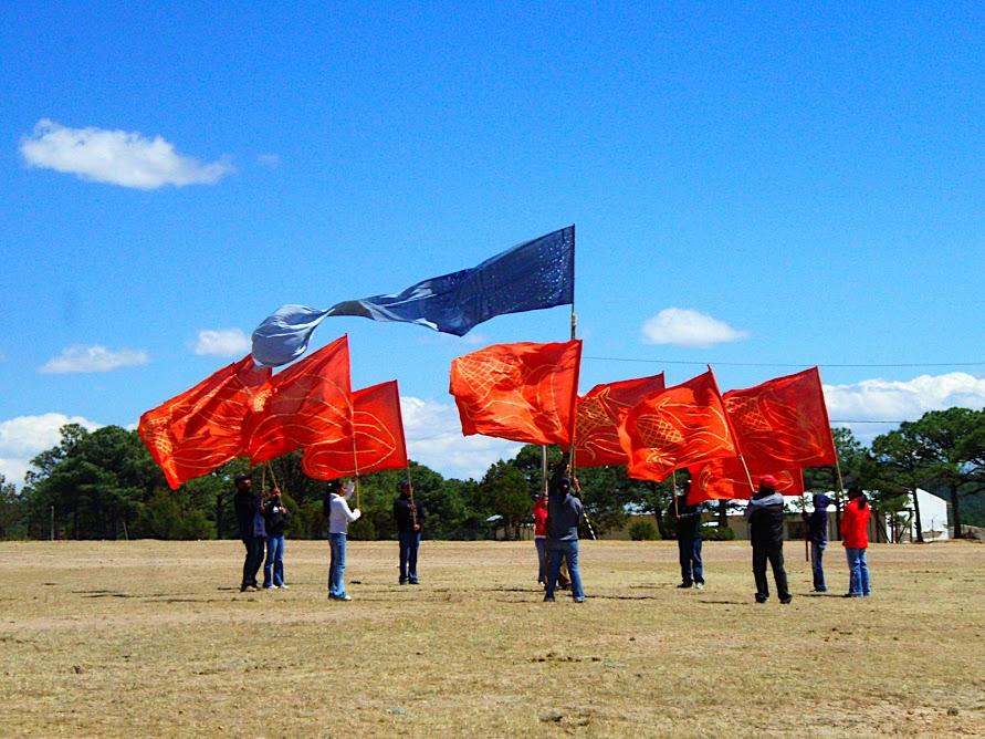 flags5.JPG