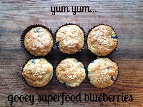 The Food Stork. Fresh cooked food for new parents. Blueberry muffins
