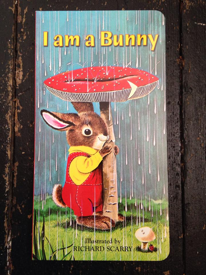 i am a bunny.jpg