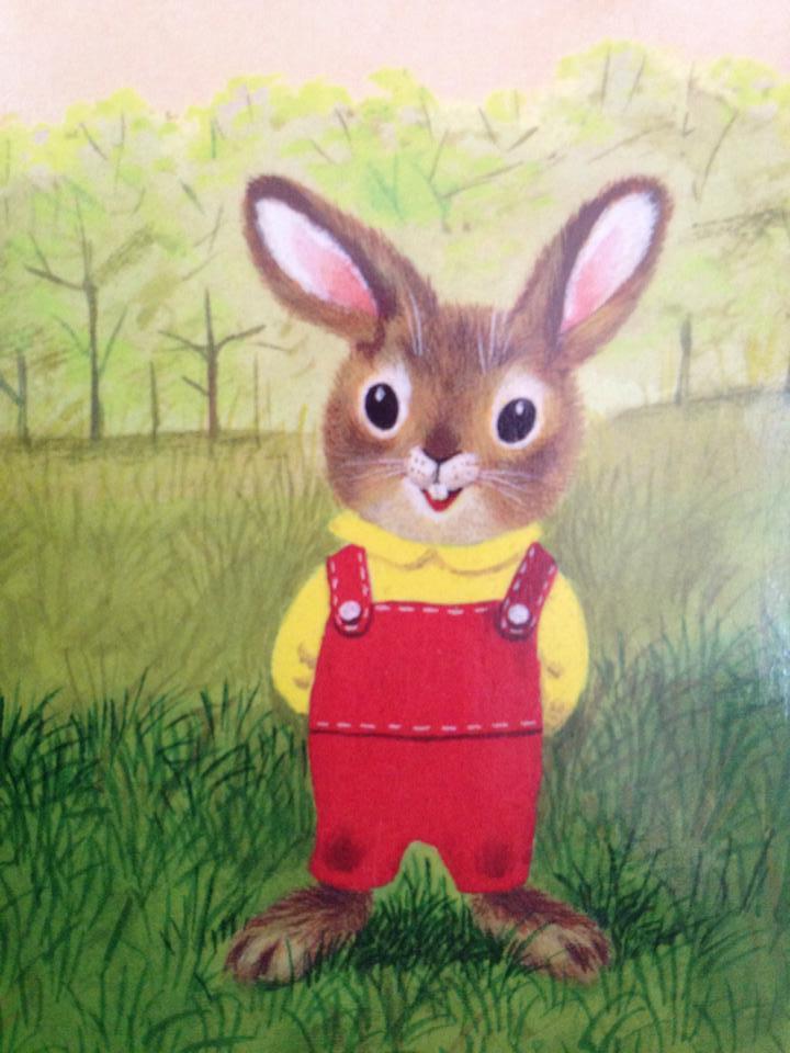 i am a bunny 2.jpg