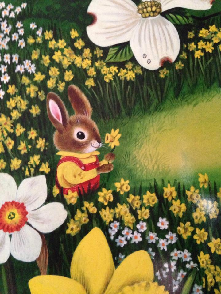 i am a bunny 4.jpg