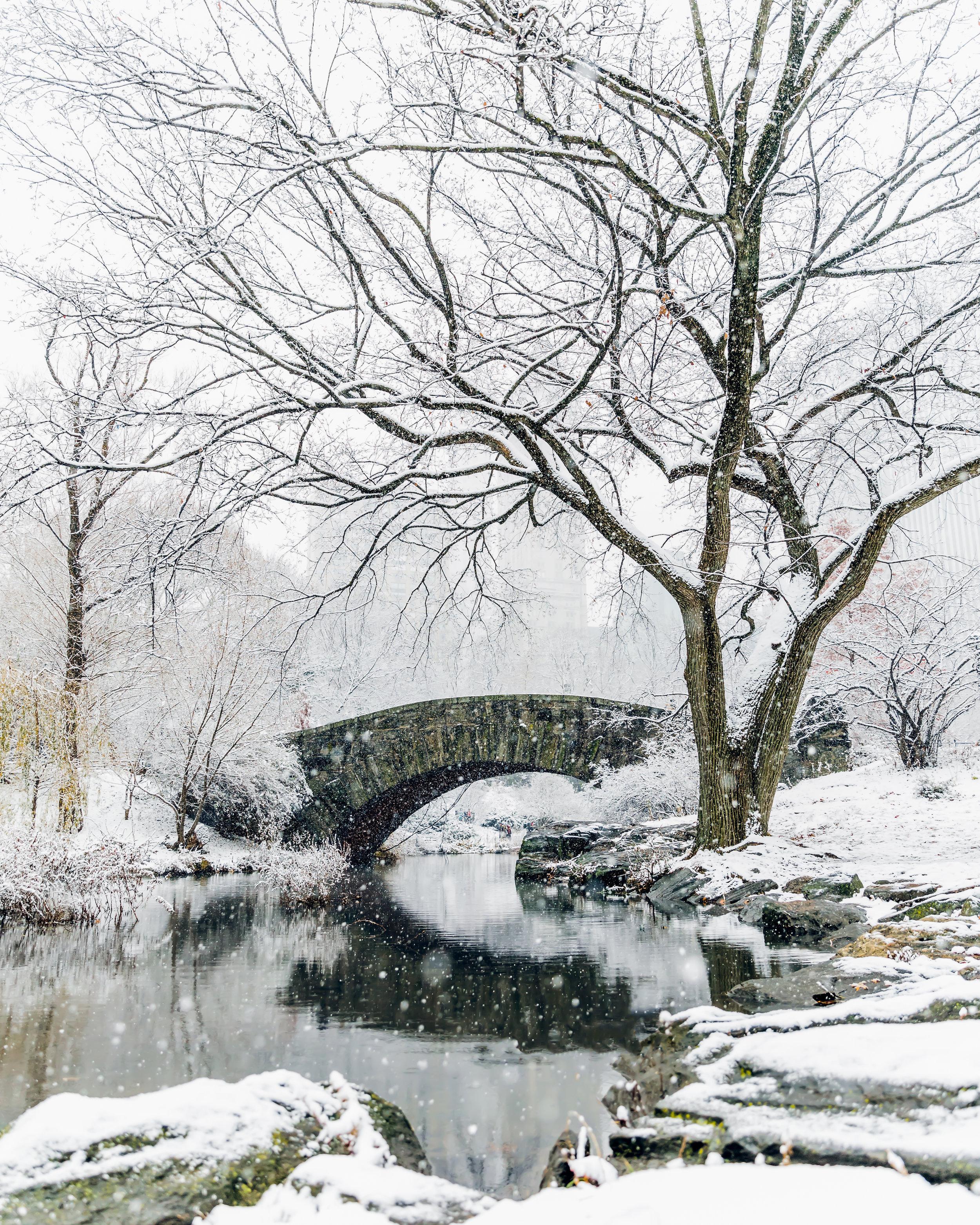 NYC_Snowday-1.jpg