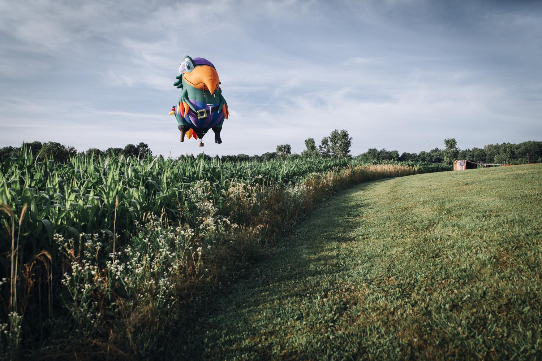 BalloonClassic_68.jpg
