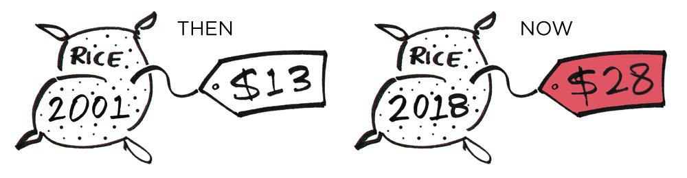 ANLM_2018_Rice_Bags_v1.jpg