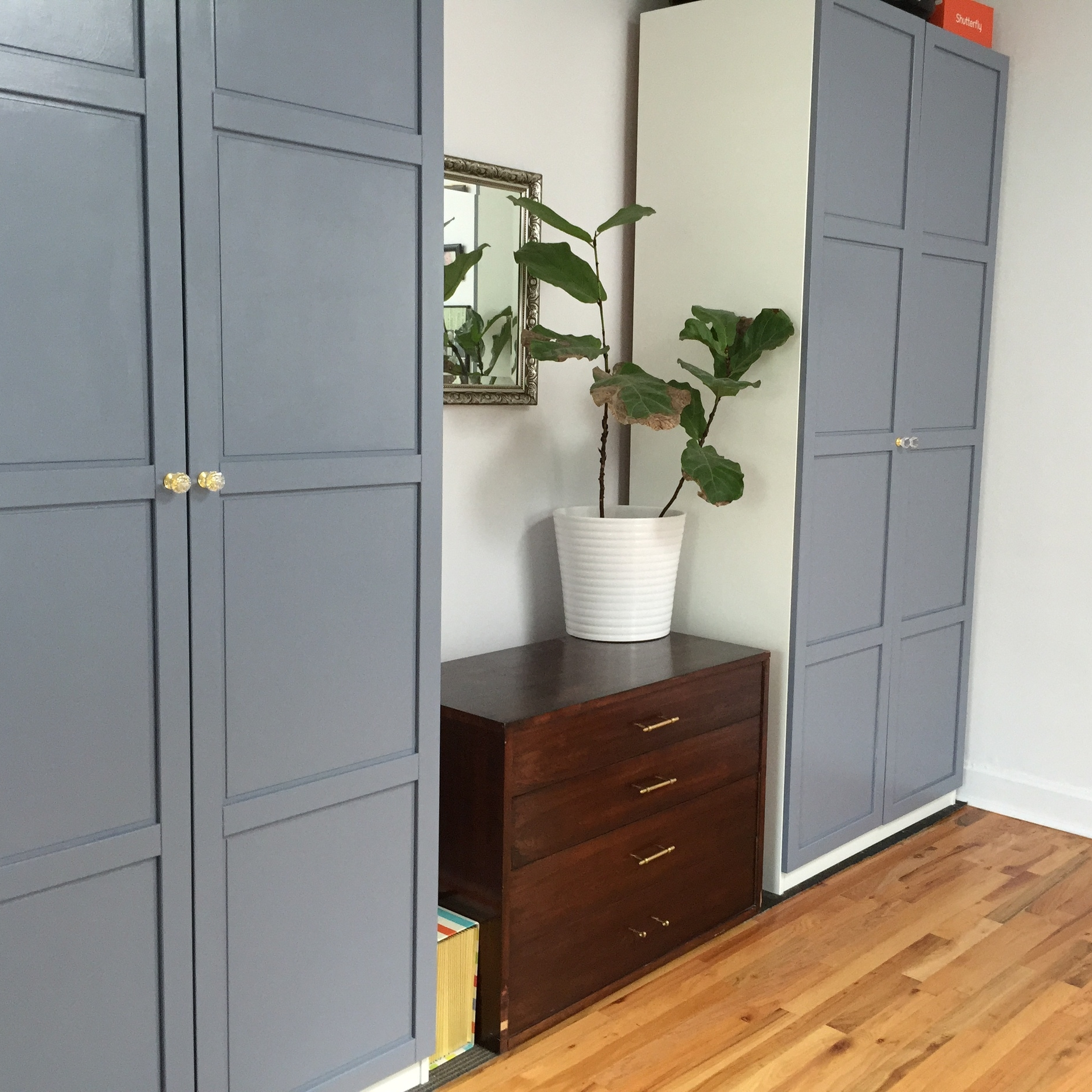The IKEA PAX wardrobes I painted and added hardware to, and one of our favorite plants.