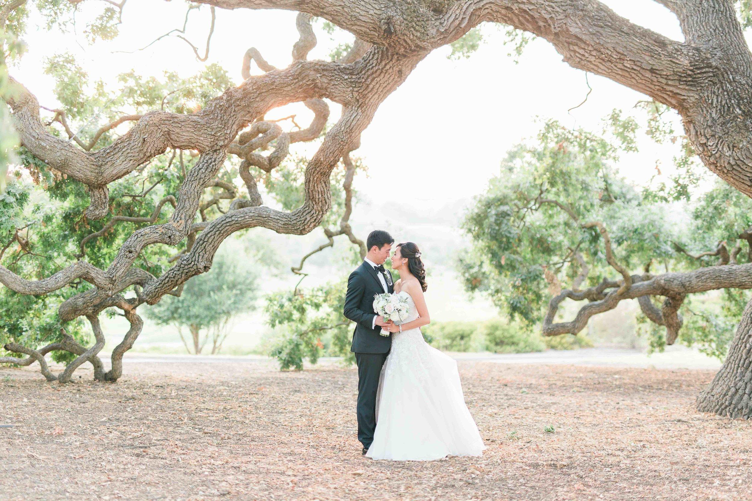 Ruby Hill Wedding Photos by JBJ Pictures - San Francisco Wedding Photographer - Pleasanton Wedding Venue (72).jpg
