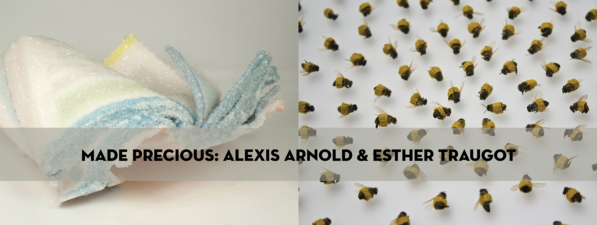 """I am excited to be exhibiting at  Napa Valley Museum  with  Esther Traugot ! My crystallized book series and a few other small sculptures are on display alongside Traugot's crochet covered natural specimens from August 3 through September 18 in the Spotlight Gallery at the museum.  """"In Arnold and Traugot's work objects both natural and man-made are made precious by encapsulating them in crystal and fiber. Their coverings act as eulogies to the fading culture of hardcopy books and to the dead representative bodies of a species in crisis. In their practices each artist transforms and elevates their subject, encouraging observation and attention."""" - Meagan Doud, Curator, Napa Valley Museum"""