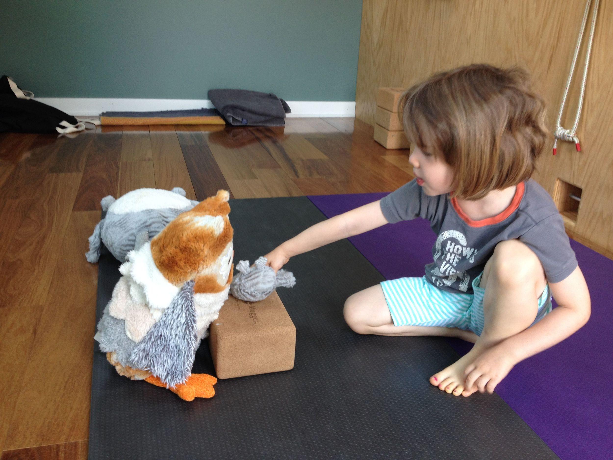 owl in the studio.jpg