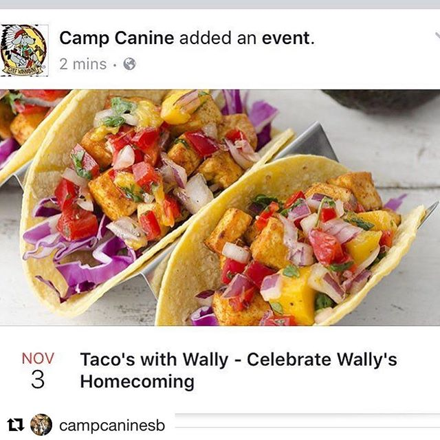 Tomorrow we're heading to @campcaninesb for lunch & to hear about the amazing homecoming story of Wally! Who crossed multiple county lines, via multiple 'rescuers' and made his way home to his Mom, Mary Holand of @campcaninesb ・・・ Thursday = Taco Truck @campcaninesb celebrating Wally's homecoming! Join Mary, Jayne and the entire camp family 11:30-1pm for Big Joe's Tacos. More details on our FB page!! #santabarbara #campcaninesb