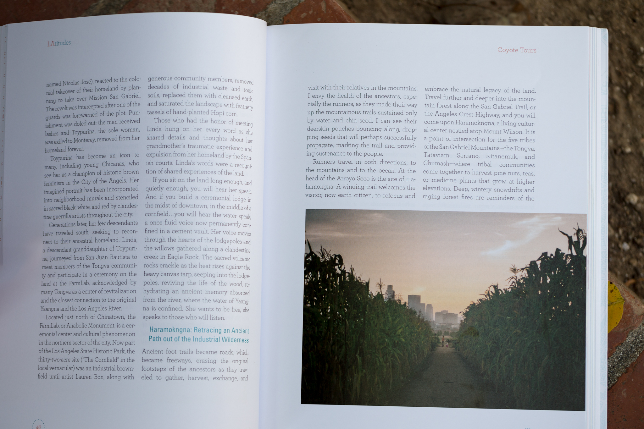 Nice big half-pager.Credits are never guaranteed; in this case they are in a graphic index in the back.