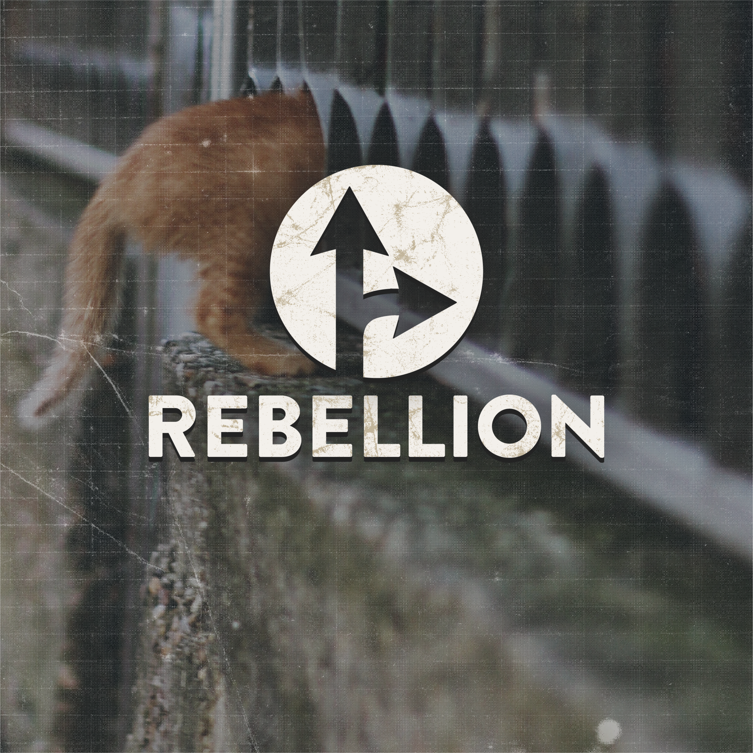 PGP1506_Slow Culture_WebsiteCover_Rebellion_NowAvailable-01.png