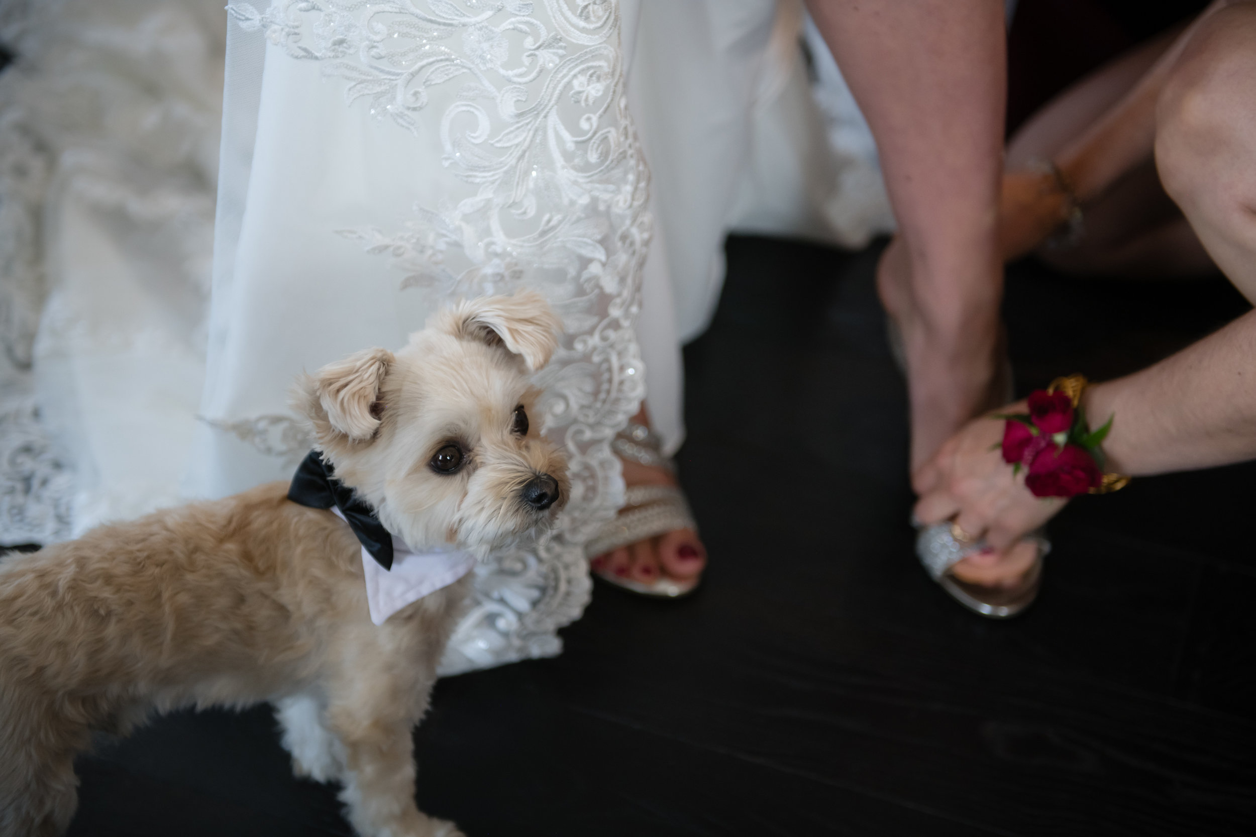 Laura_Danny_Wedding_Sneak_Peek_021.jpg