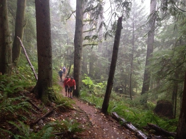 Becoming one with the trail at Tiger Mountain.