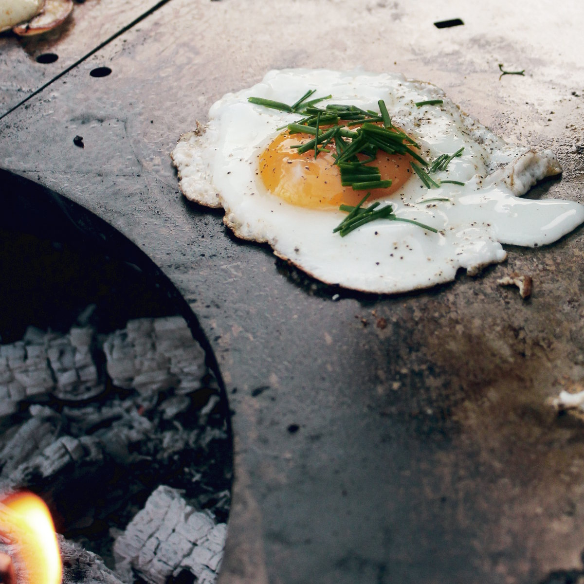 YAGOONA-Ringgrill-holz-feuer-wood-fire-ring-grill-barbecue-in-action012-egg.jpg