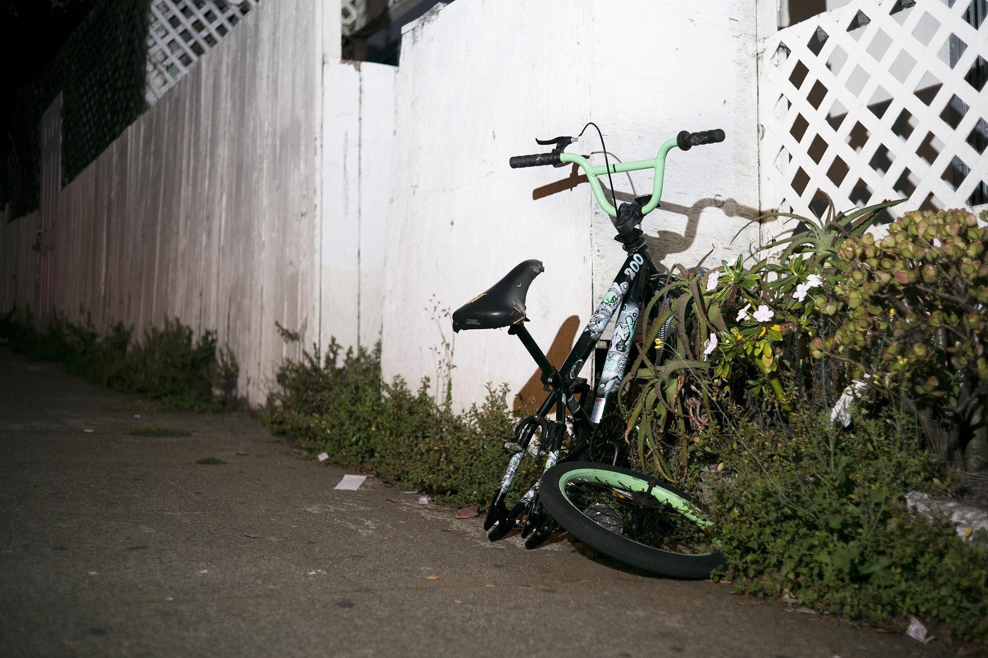 L1006398 bike overgrown small.jpg