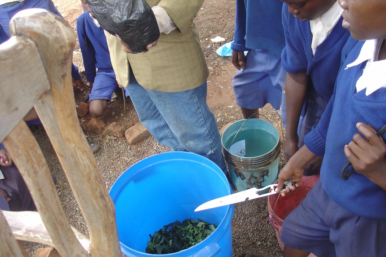 students making pesticide 2.jpg