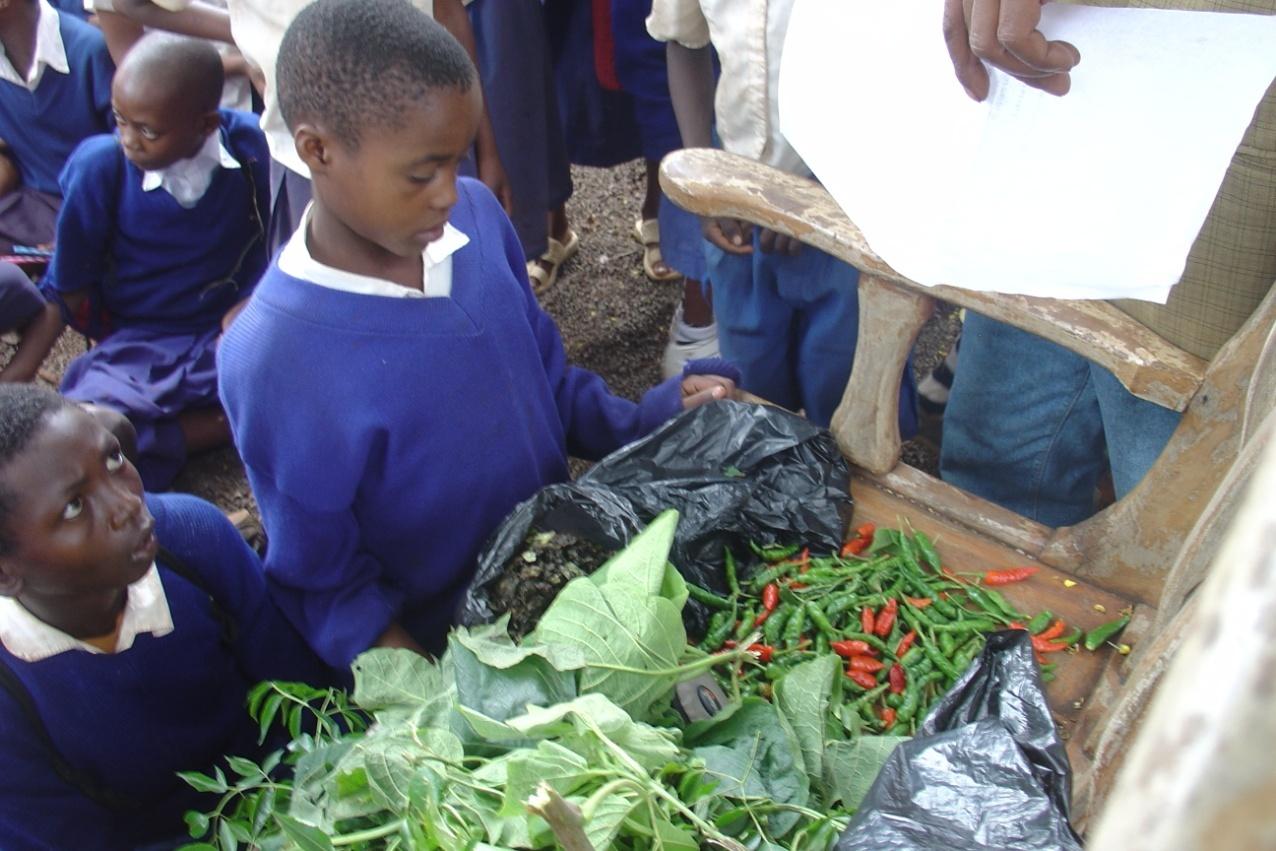 students making pesticide.jpg