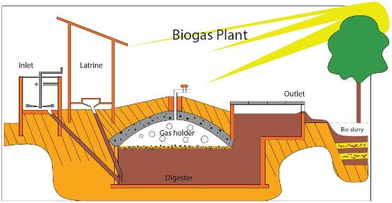 biogas with Livingstone Tanzania trust