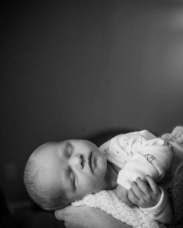 Newborn babies are the sweetest. ❤️ #wvphotographer #newbornphotography