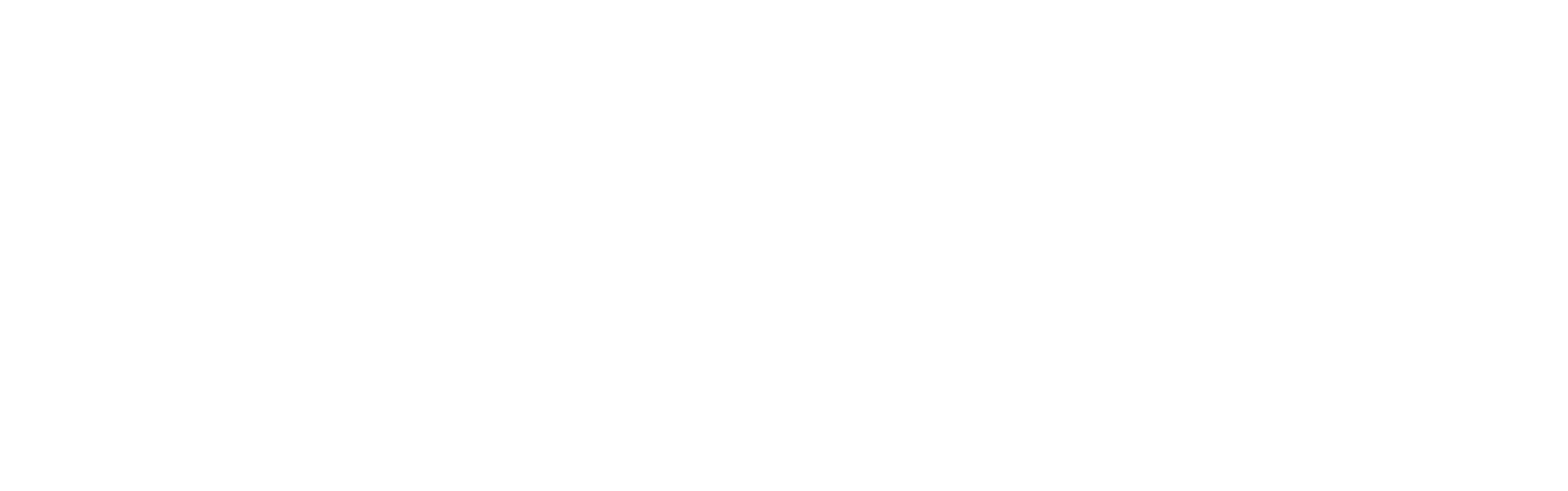 acts 29 vector white.png