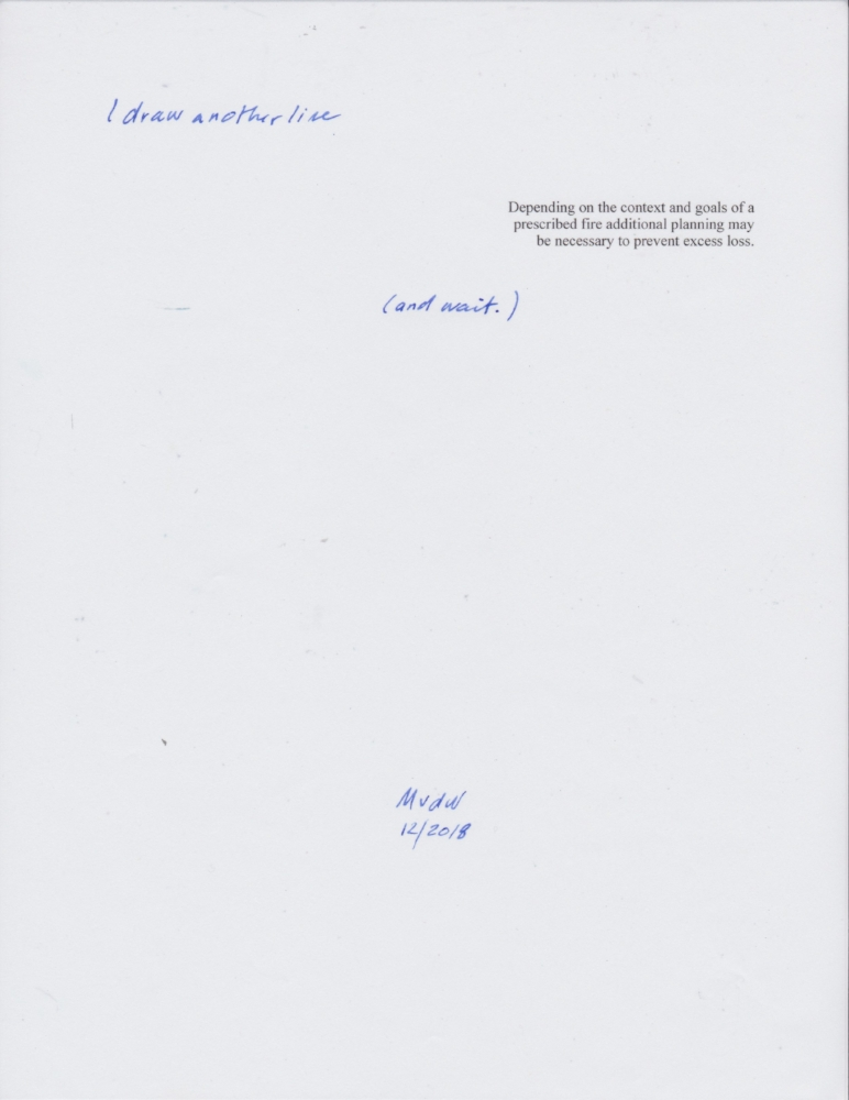 Inkjet on 8 1/2 inches x 11 inches/21.6 cm x 27.9 cm vellum (25 % rag) with handwriting in blue ink.
