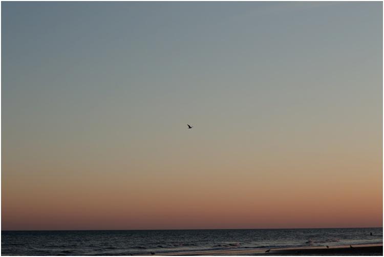 Brighton sunset 8.jpg