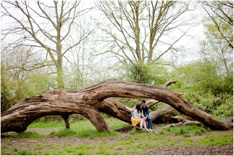 ZJ Hampstead Heath engagement10.jpg