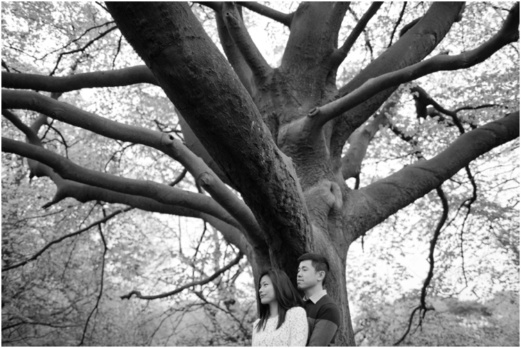 ZJ Hampstead Heath engagement15.jpg