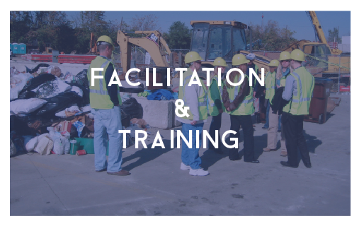 facilitation and training