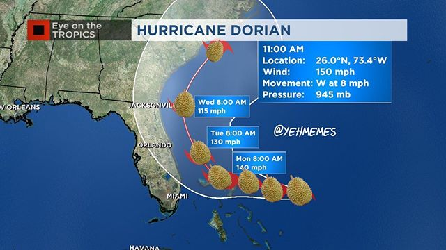 Anyone else think the same thing when people talk about this hurricane?  #hurricanedurian #hurricanestinkyfruit @eastsideasianmarket