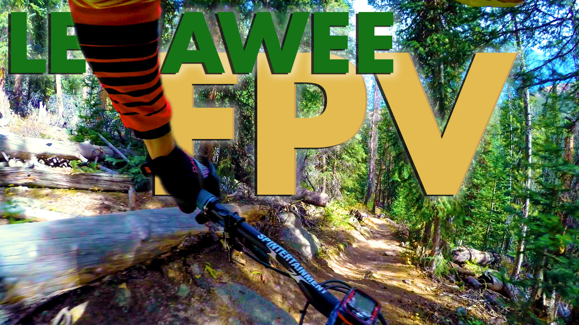 lenawee 1st person view -