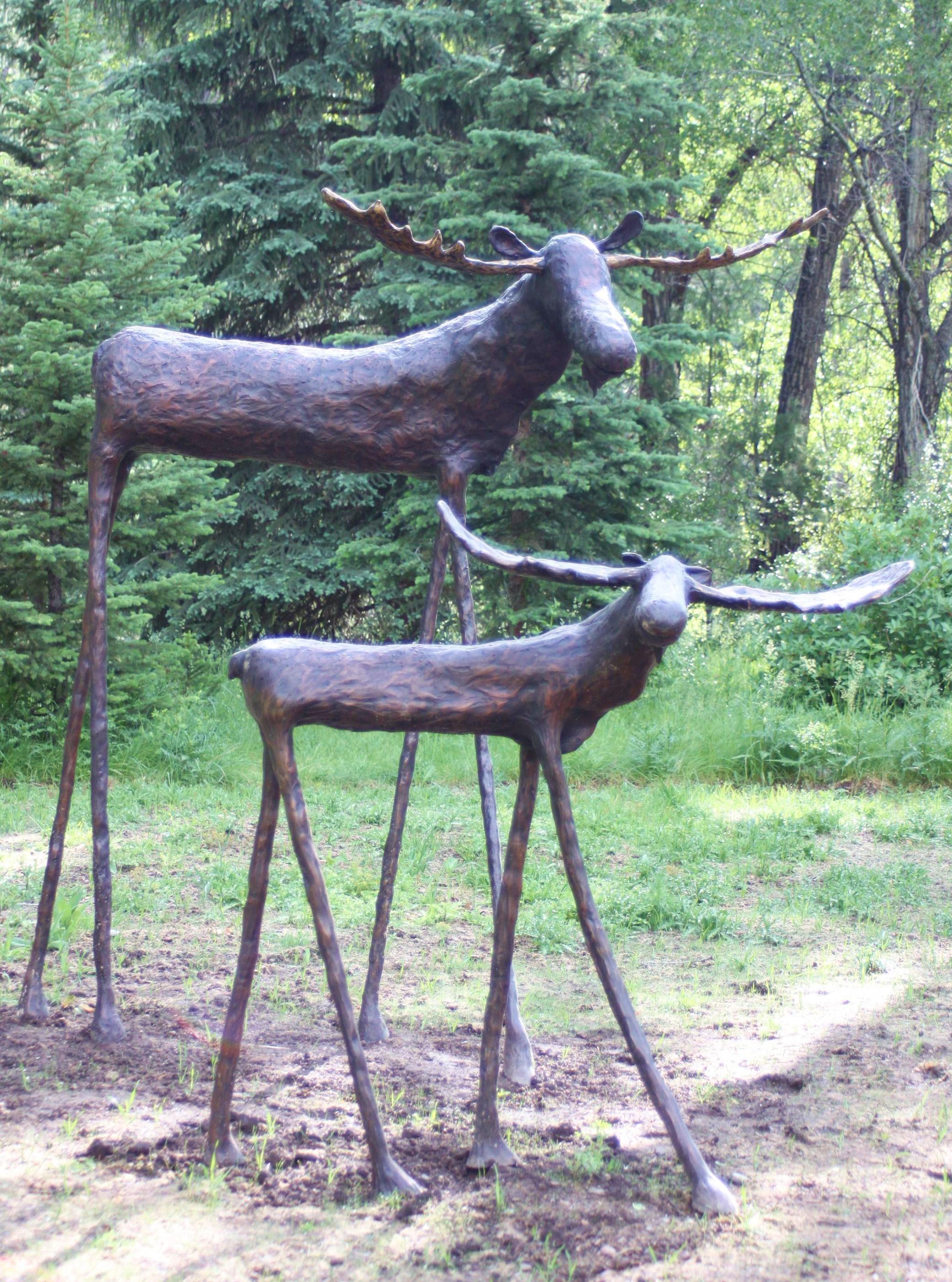 """Moose 58"""" & 94"""""""