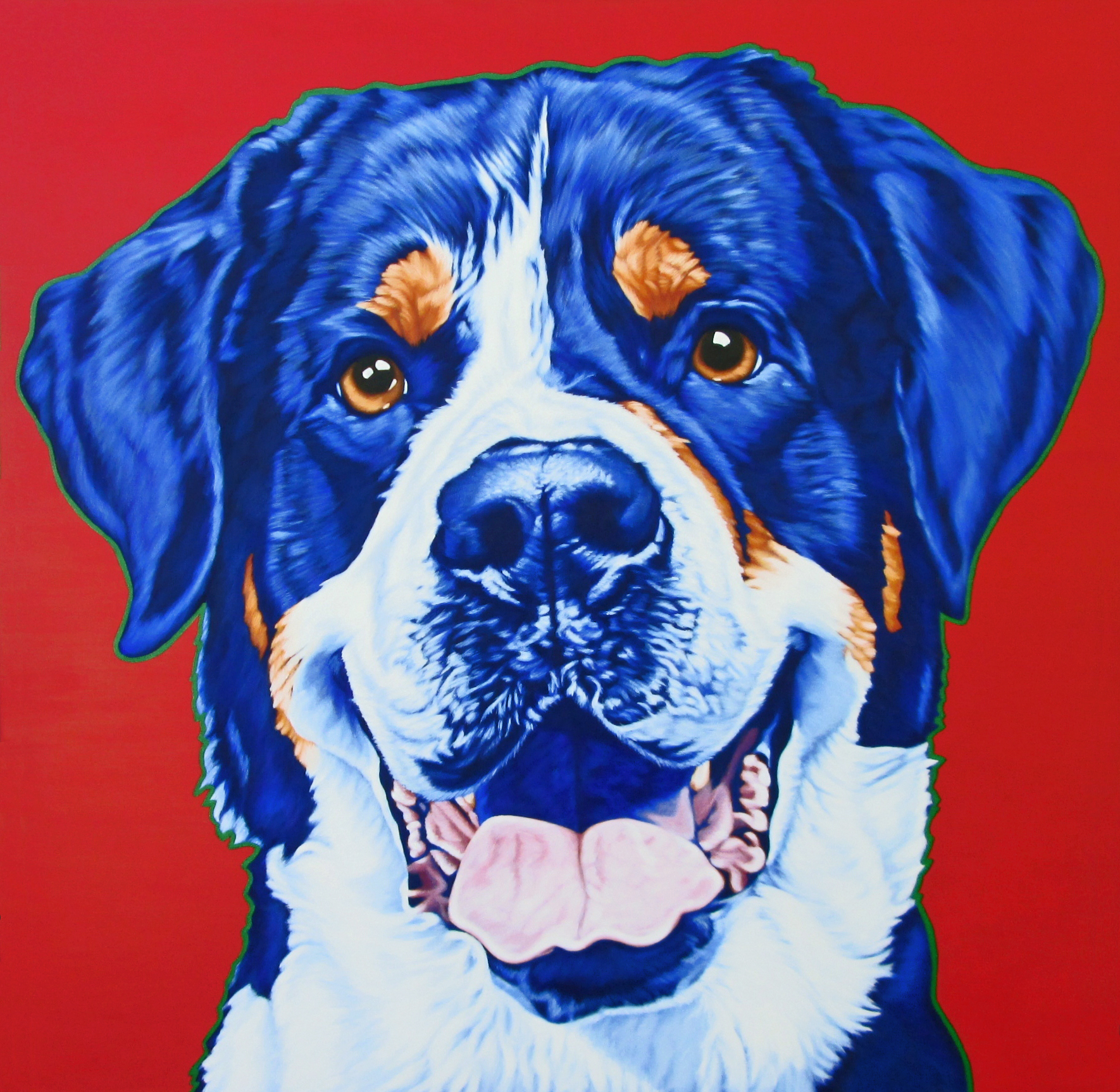 Chuck - Greater Swiss Mountain Dog