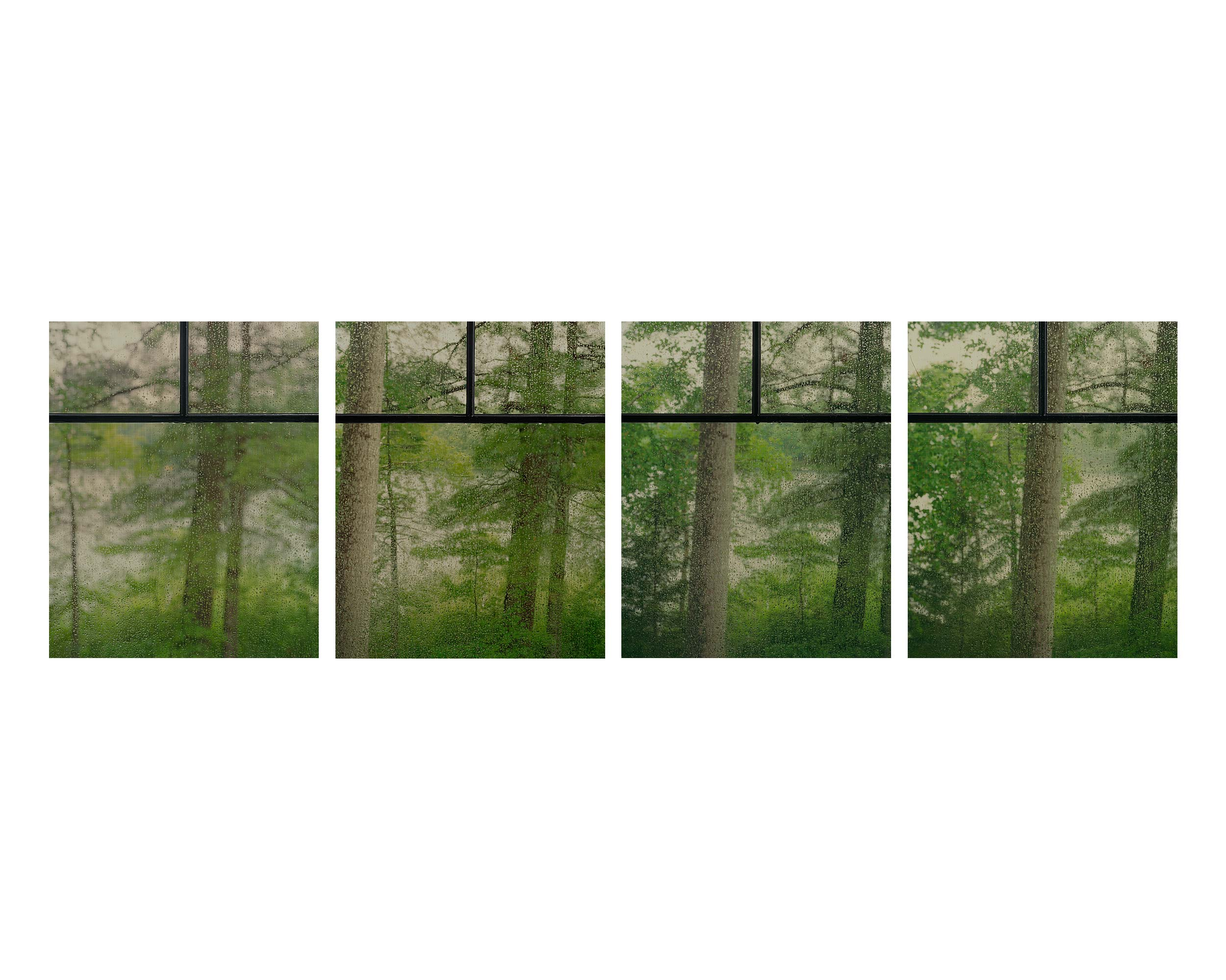 SecondNature-11.jpg