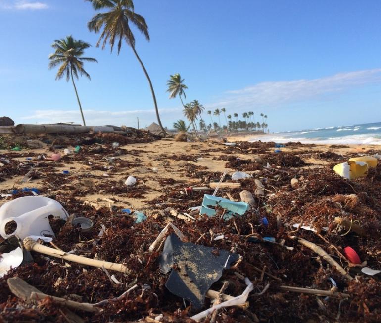 cleaner oceans