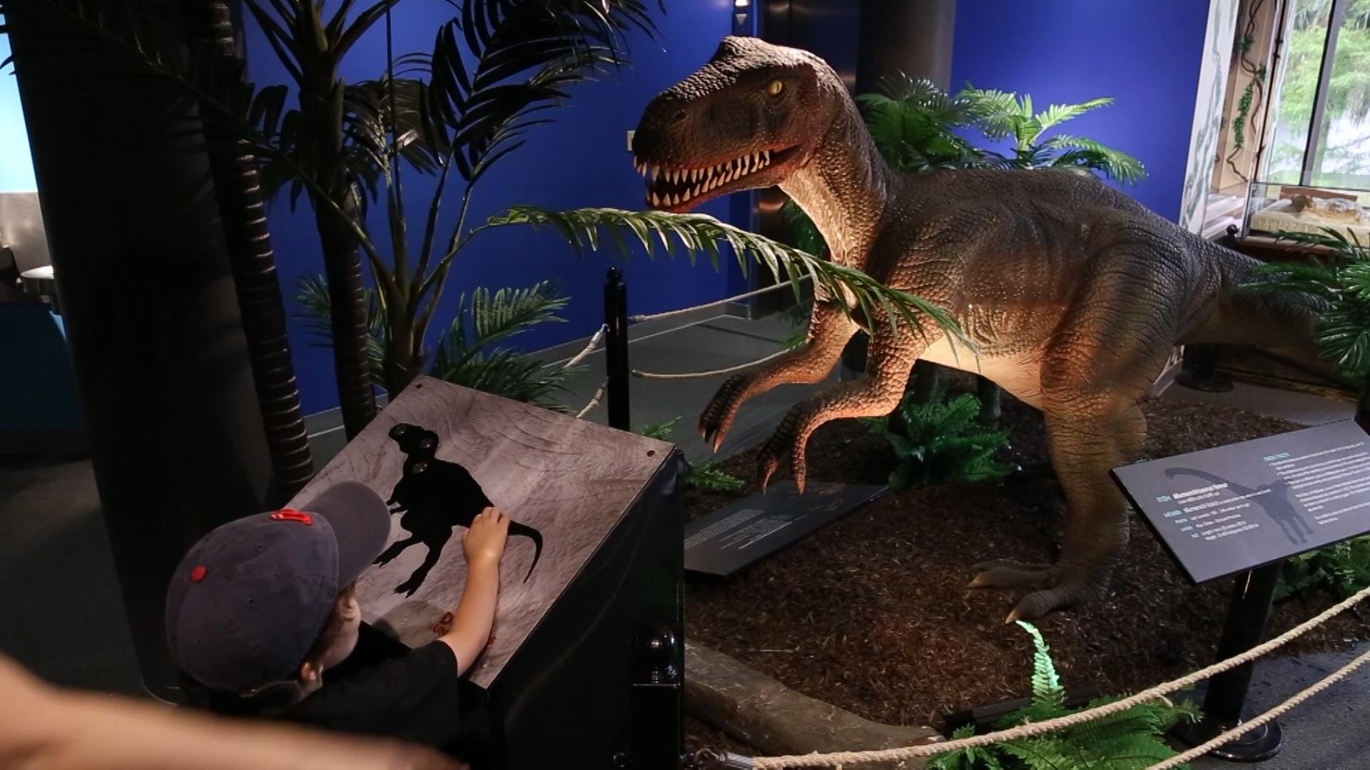 Back to School Jacksonville dinosaur