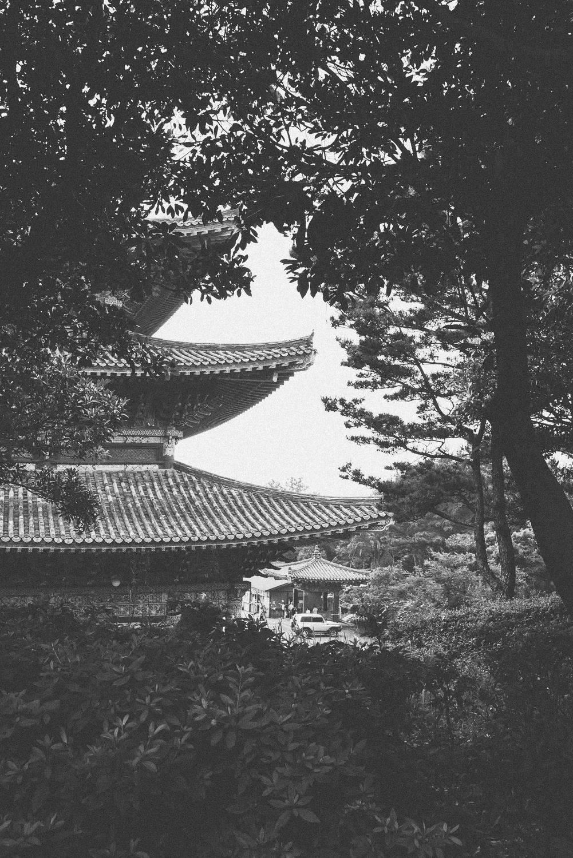 ASHarris_South-Korea_050.jpg