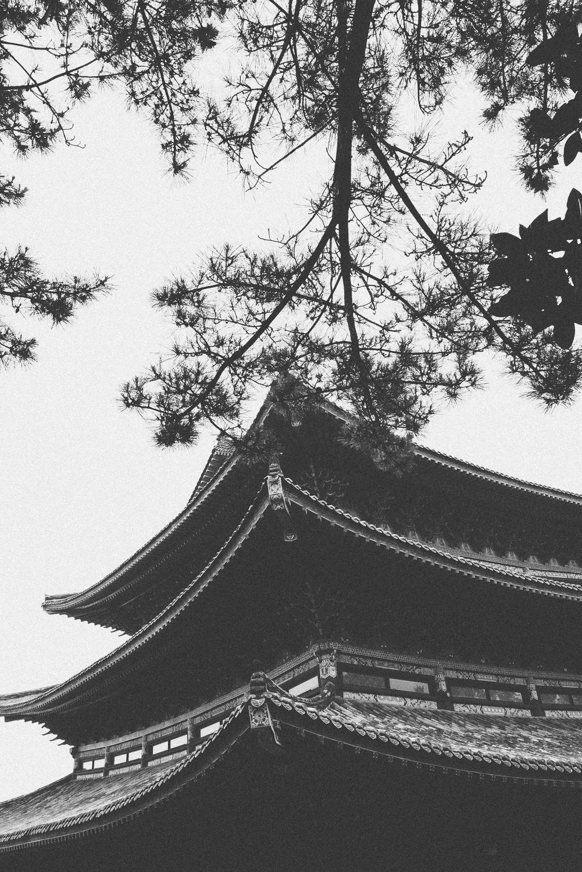 ASHarris_South-Korea_051.jpg