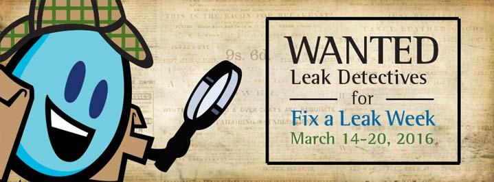 fix a leak week plano castle doctor