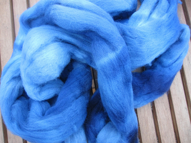Coomassie Blue on Targhee