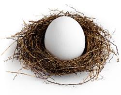 Nest-egg-article-015-1.jpg
