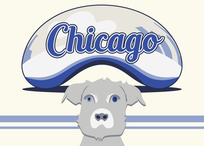 SH_ShopDogBlog_Chicago4.jpg