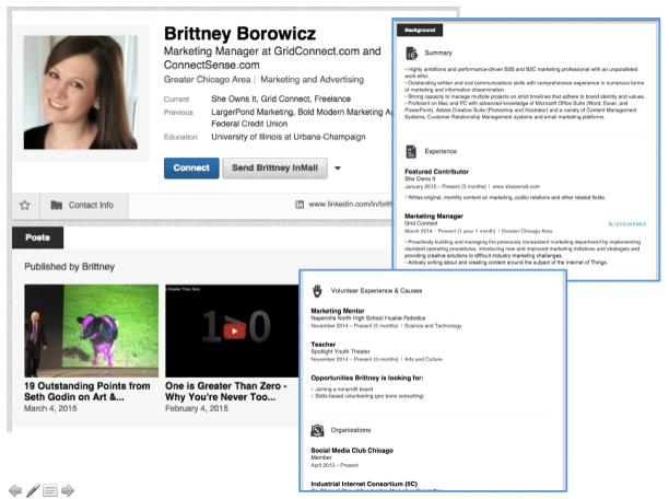 LinkedIn Profile - Brittney Borowicz