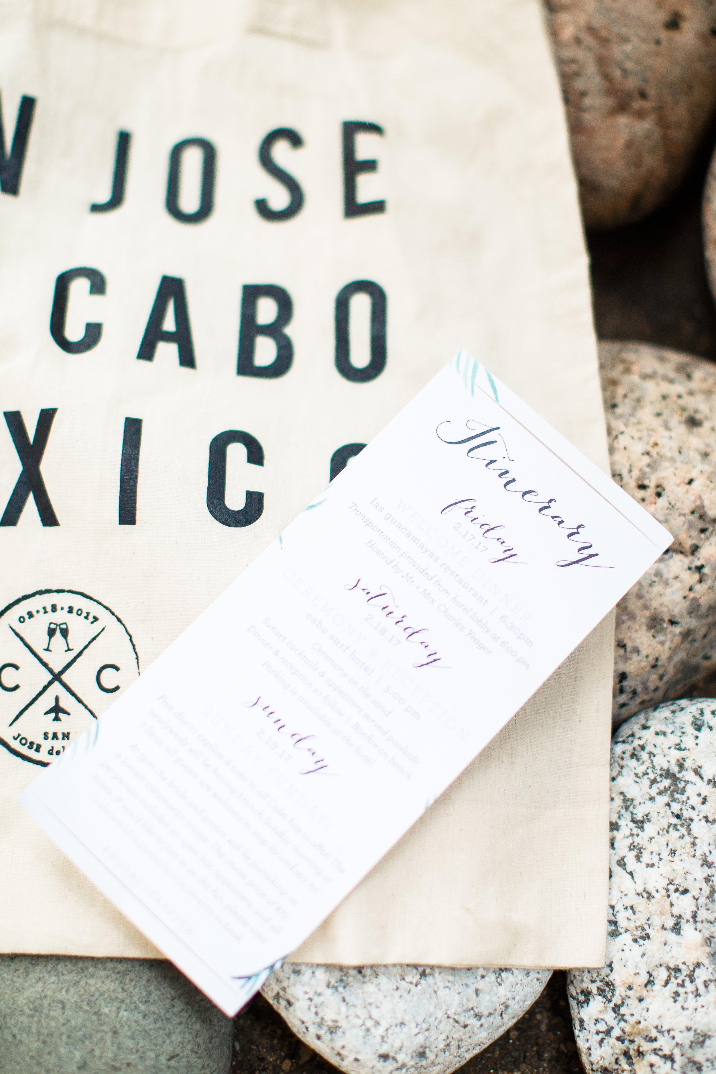Cabo Surf Wedding. C+C. Julieta Amezcua Photography. (45 of 850).jpg