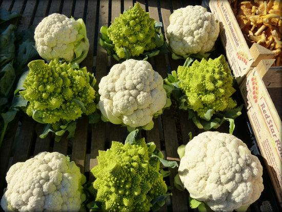 Fresh cauliflower can keep for up to 2 weeks.