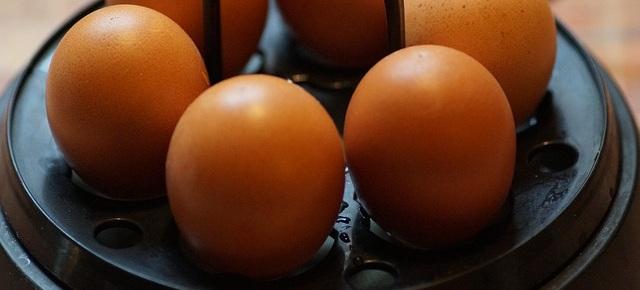 eggs-3891793_640.jpg