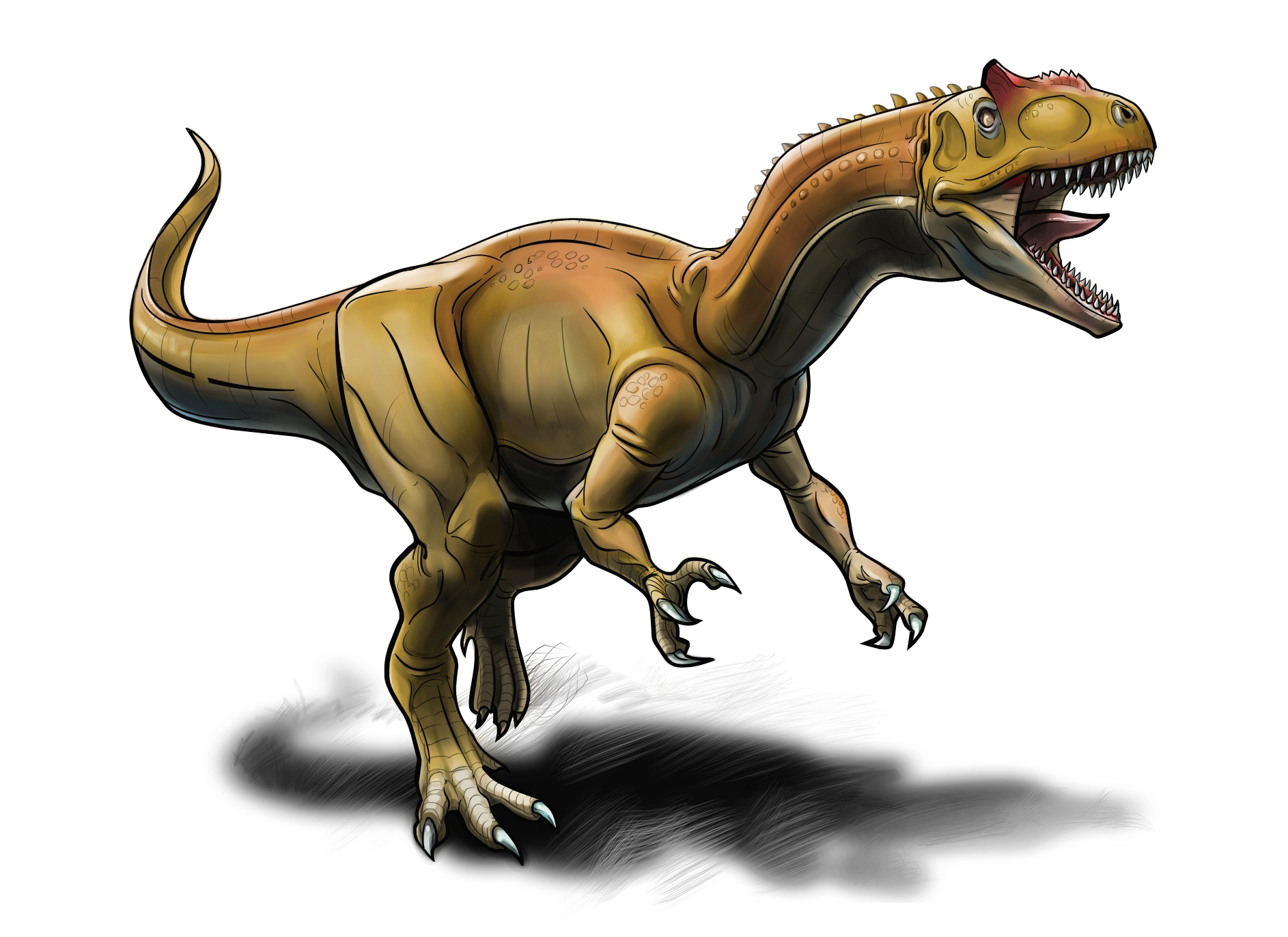 Allosaurus Color 2.jpg
